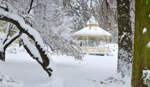 Зима у Новом Саду