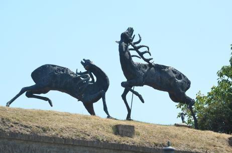 Spomenici Novog Sada Srd_6782_0